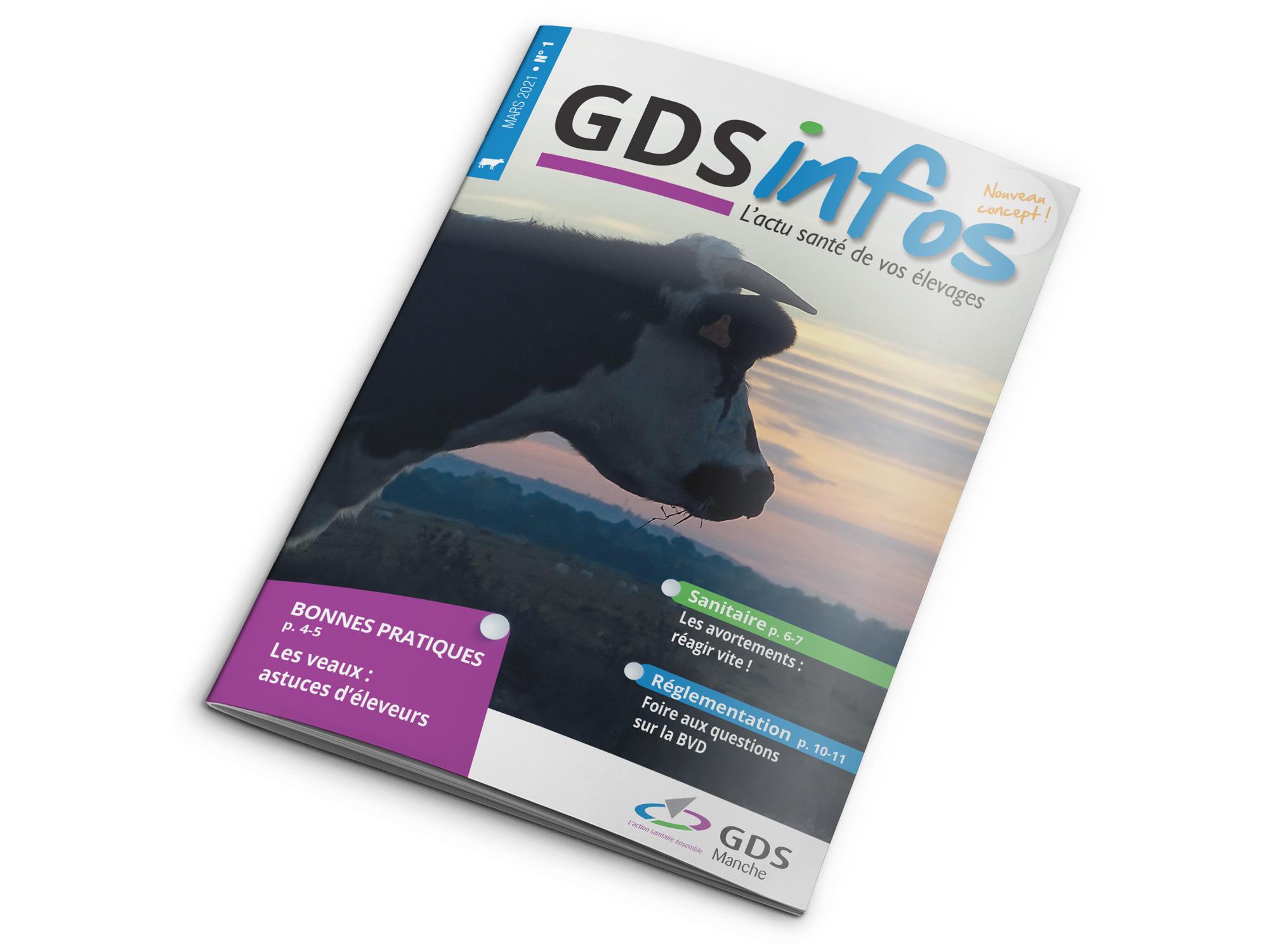 Magazine GDS Infos réalisé par l'imprimerie NII